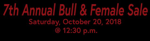 Bull Sale 3